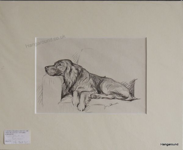 Irish Setter - lying on a sofa 1930's print by Lucy Dawson- Set D1